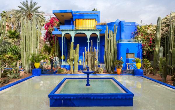 Get botanical in Marrakesh's Majorelle Gardens