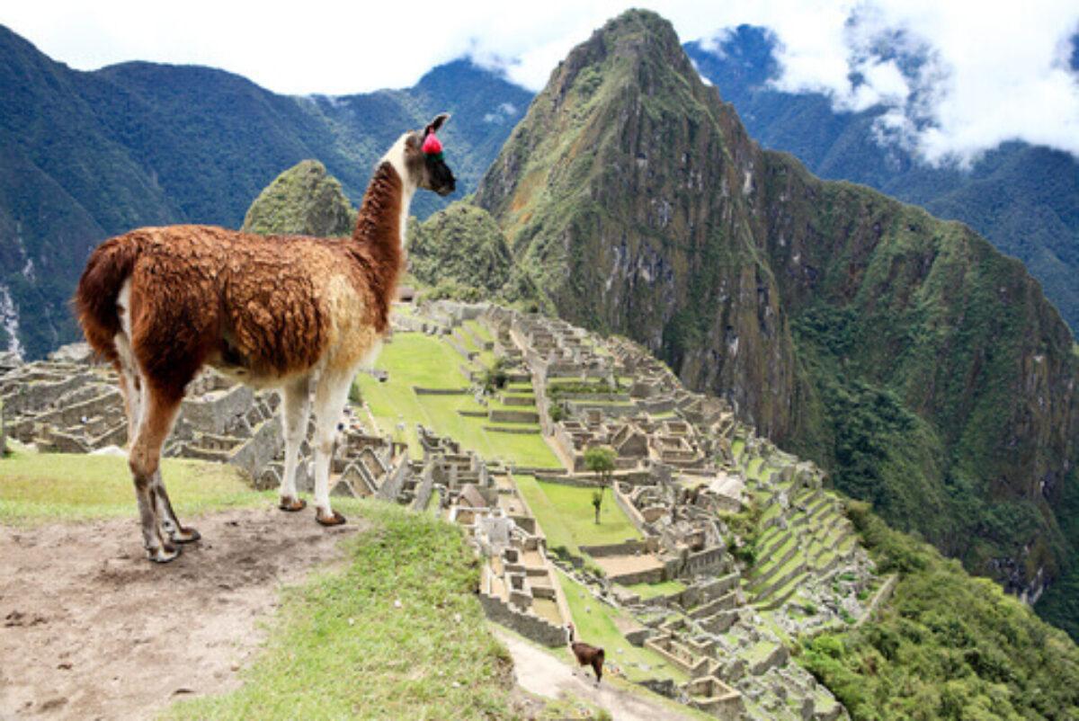 010-Machu-Picchu