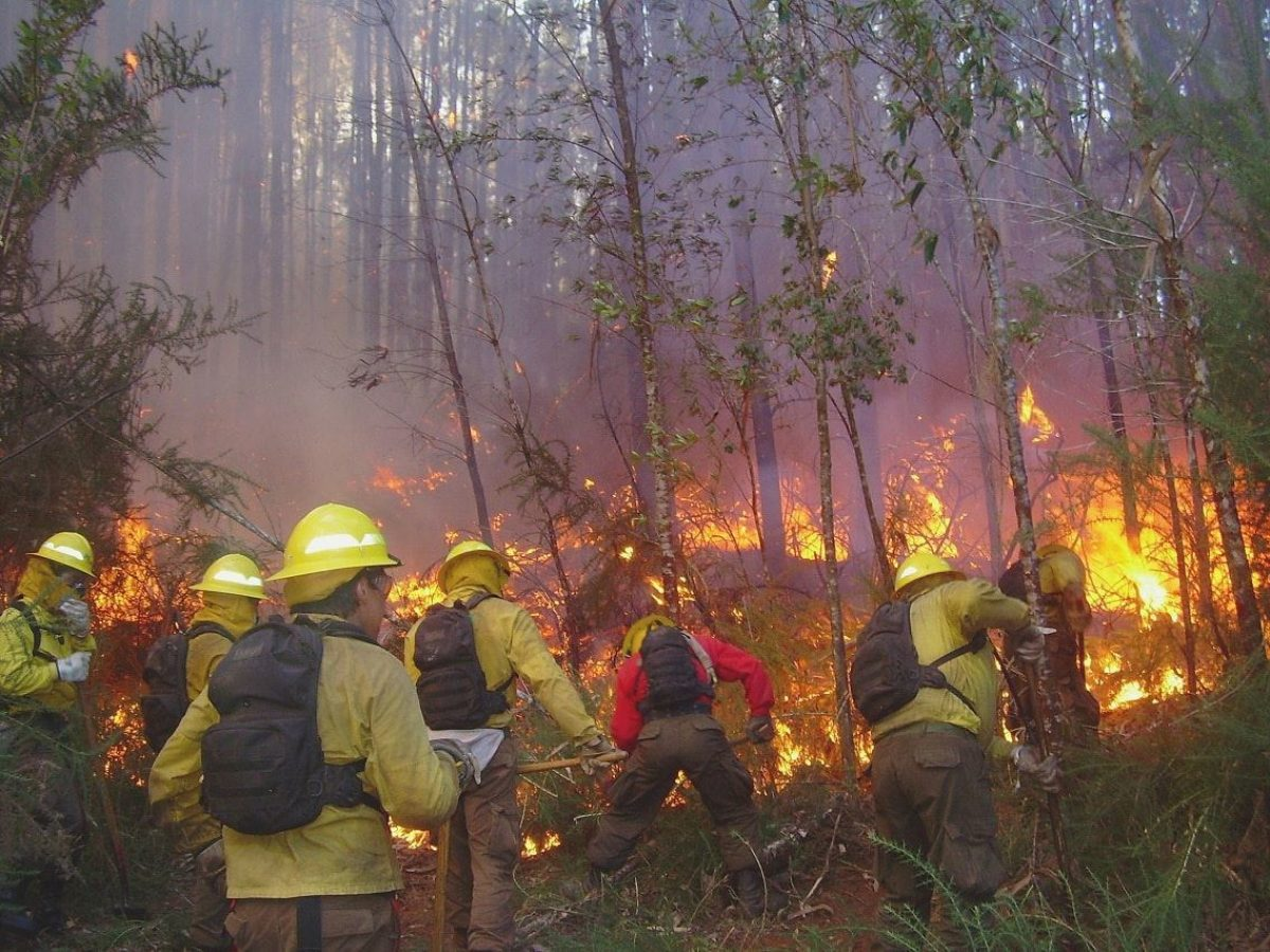020 Torres Del Paine Fire 2