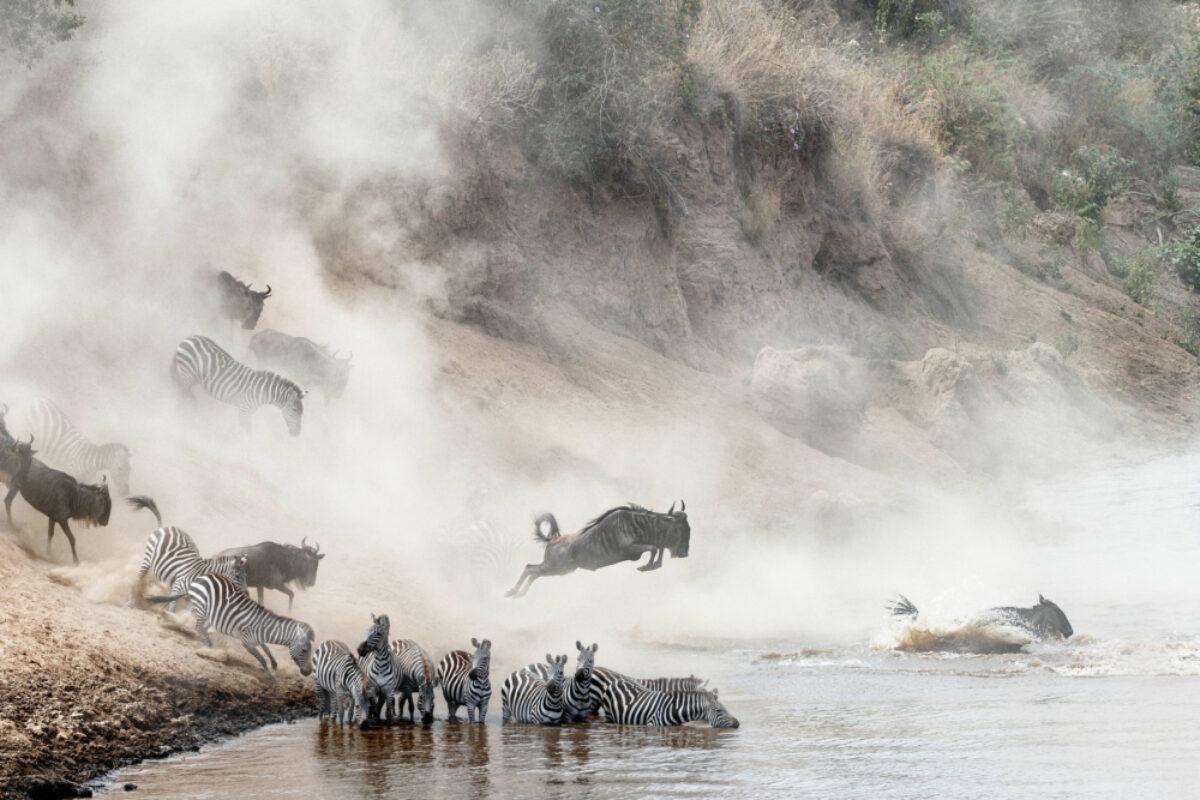 021 Tanzania Serengeti Migration