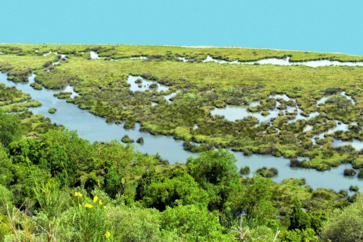 Albania Butrint National Park3
