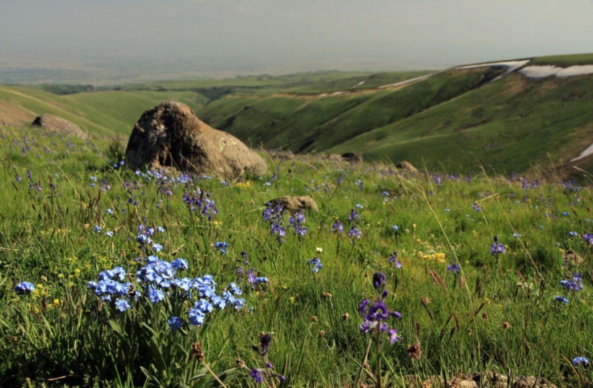 Armenia Mount Aragats area
