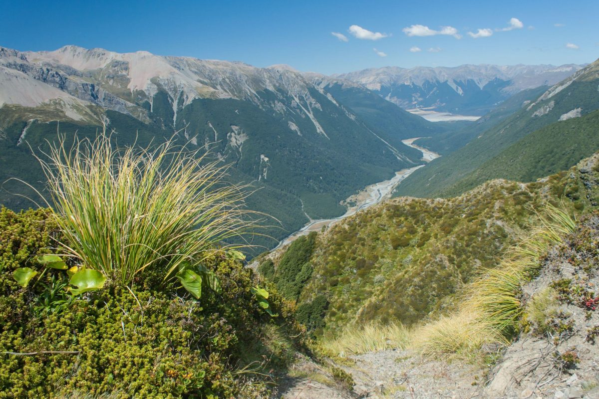 Arthurs Pass valley view