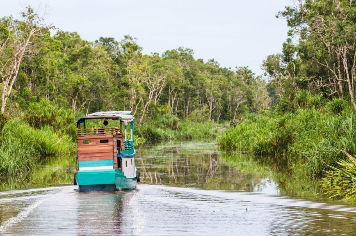 Borneo Tanjung Puting National Park traditional klotok on a river
