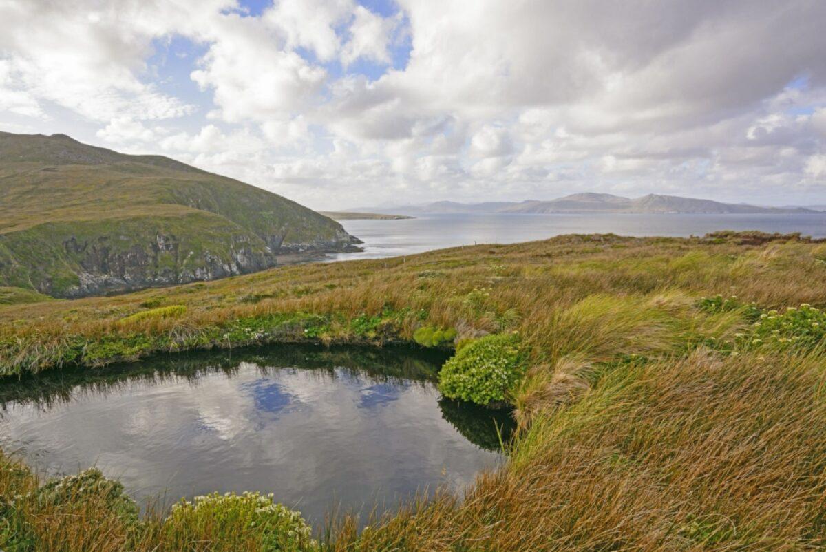 Chile Cape Horn landscape