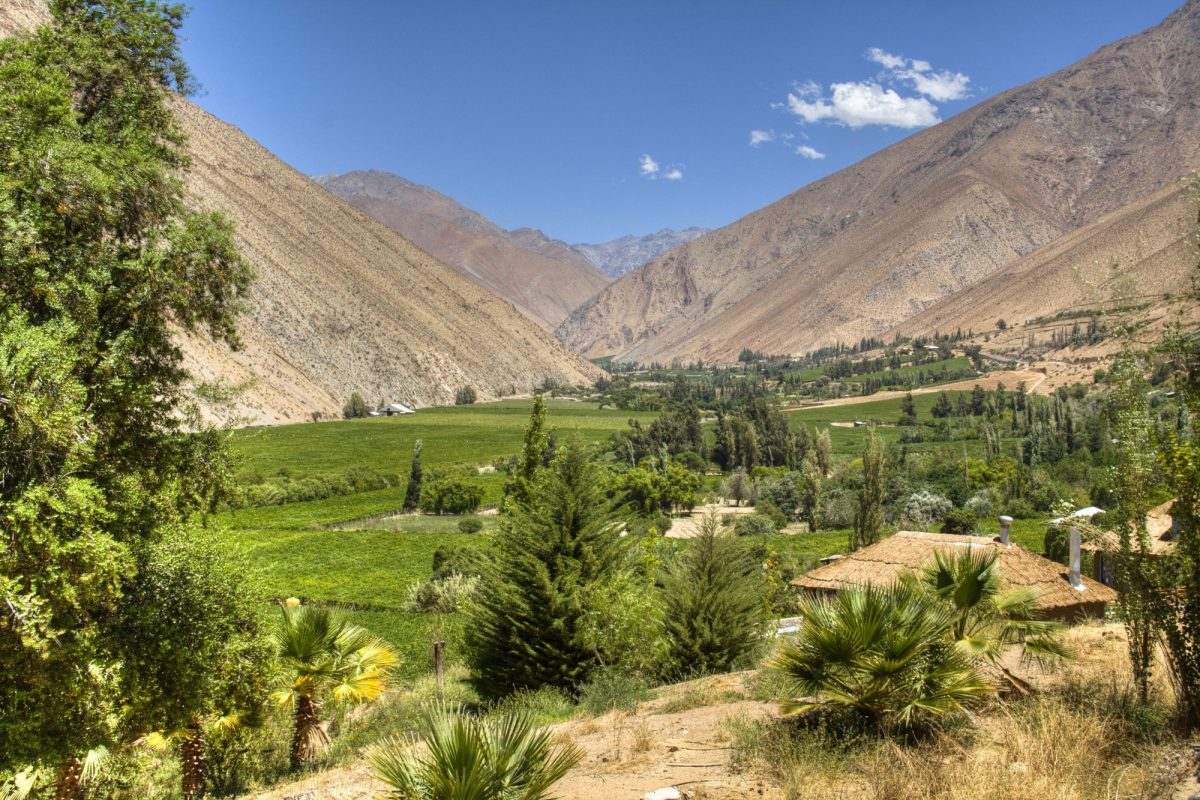 Chile Elqui Valley