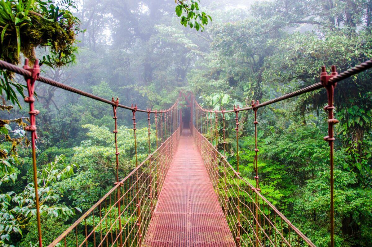 Costa Rica Monteverde bridge