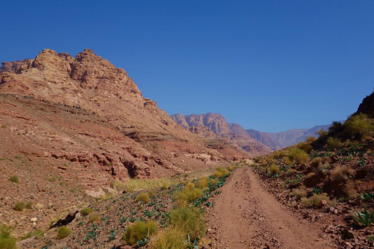 Dana-Biosphere-Nature-Reserve