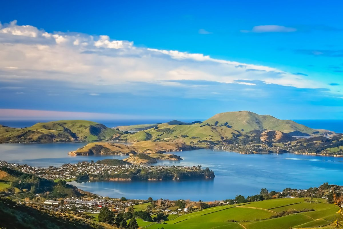 Dunedin view of town and bay as seen from the hills above