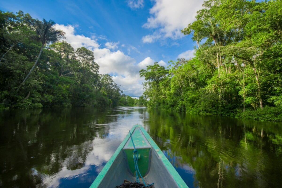 Ecuador Amazon Cuyabeno National Park