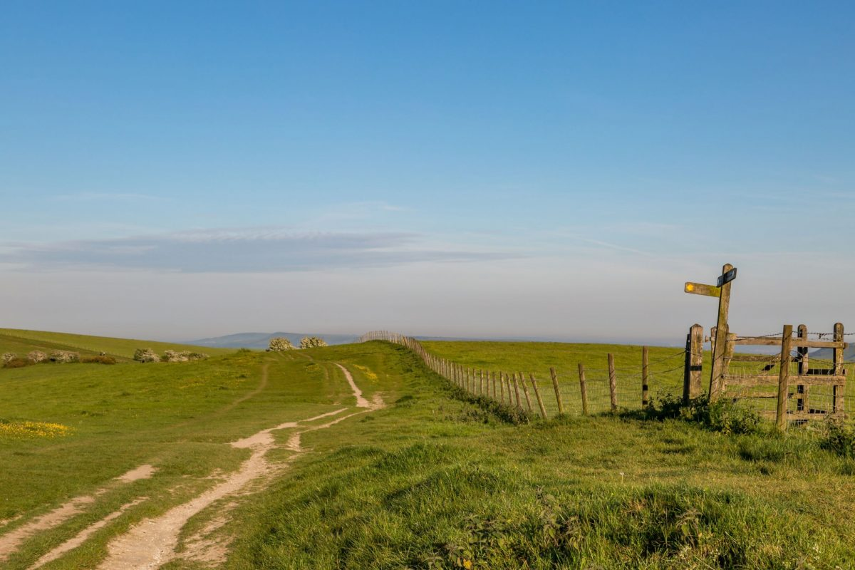 England South Downs Way 3