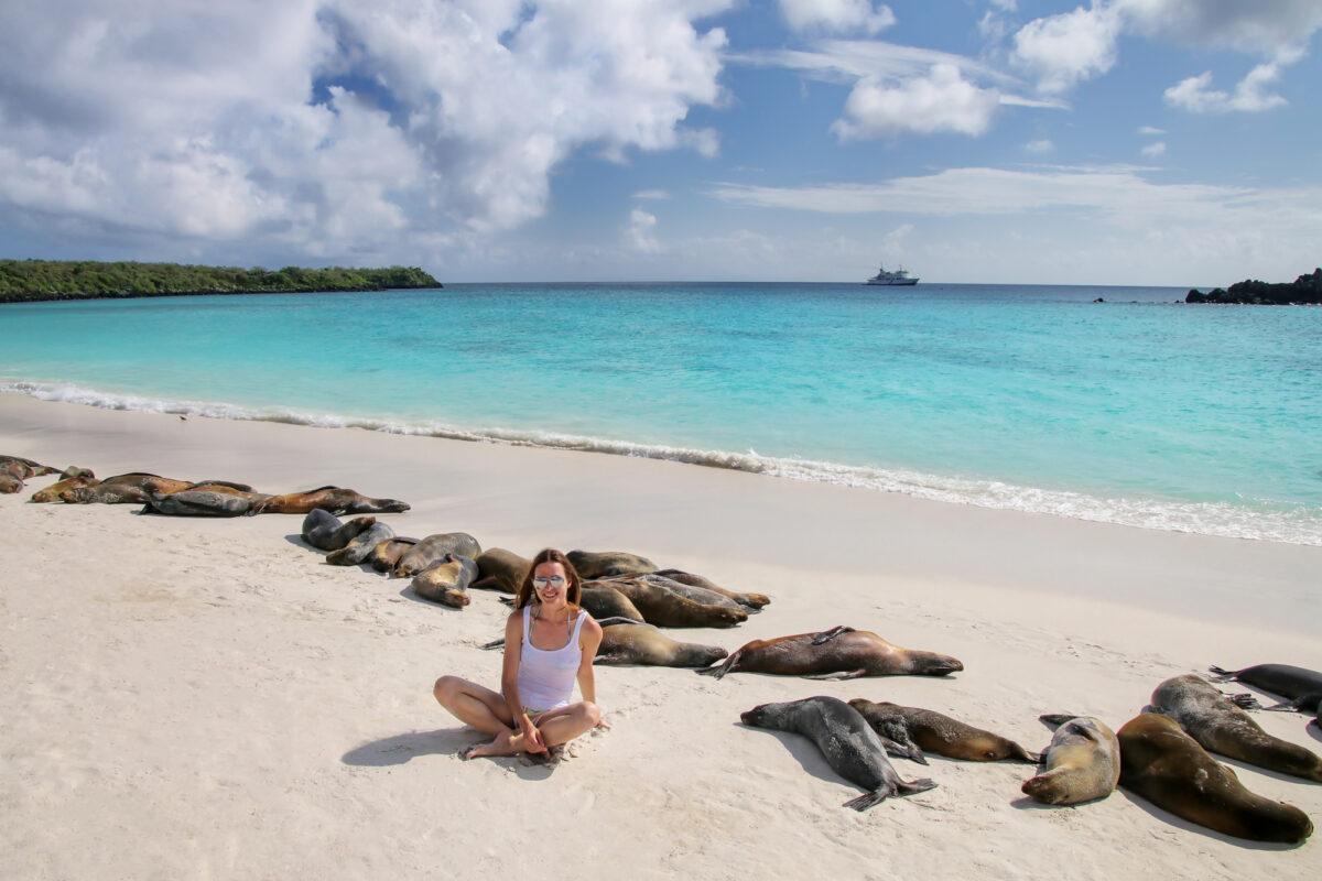 Galapagos-sea-lion-beach