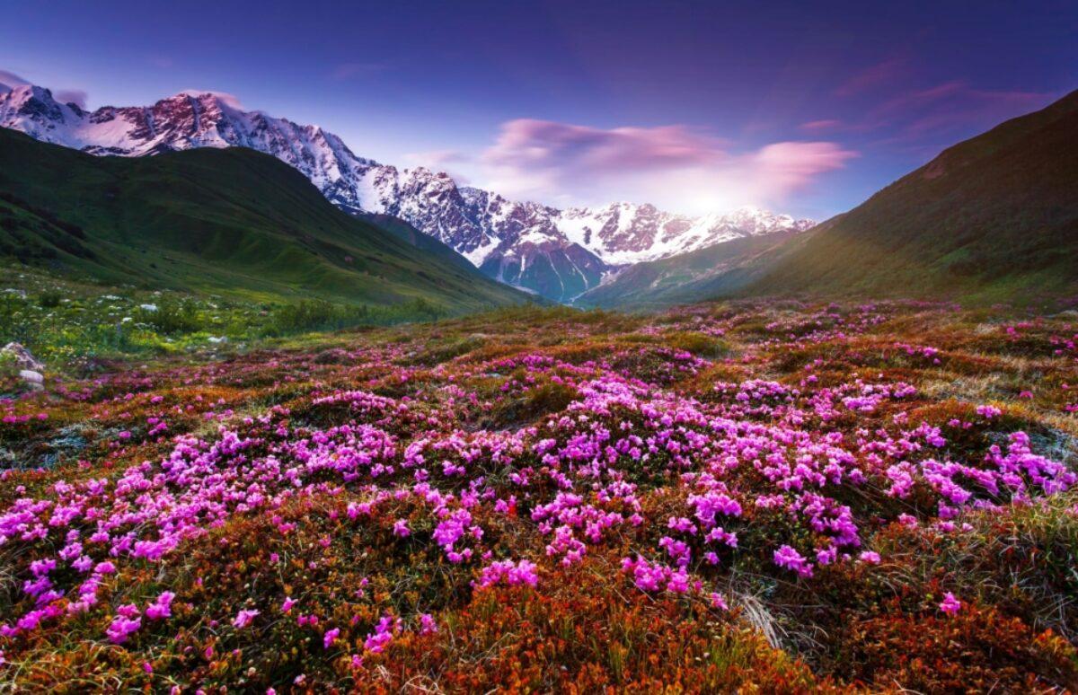 Georgia Upper Svaneti