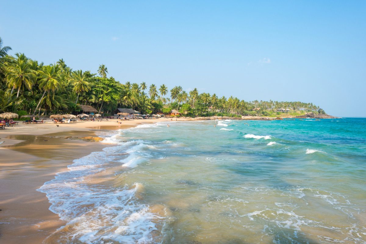 Goyambokka Sri Lanka