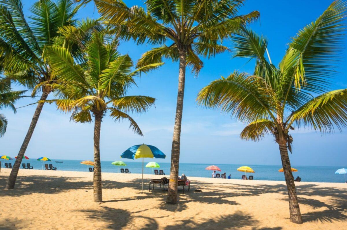 India kerala beach