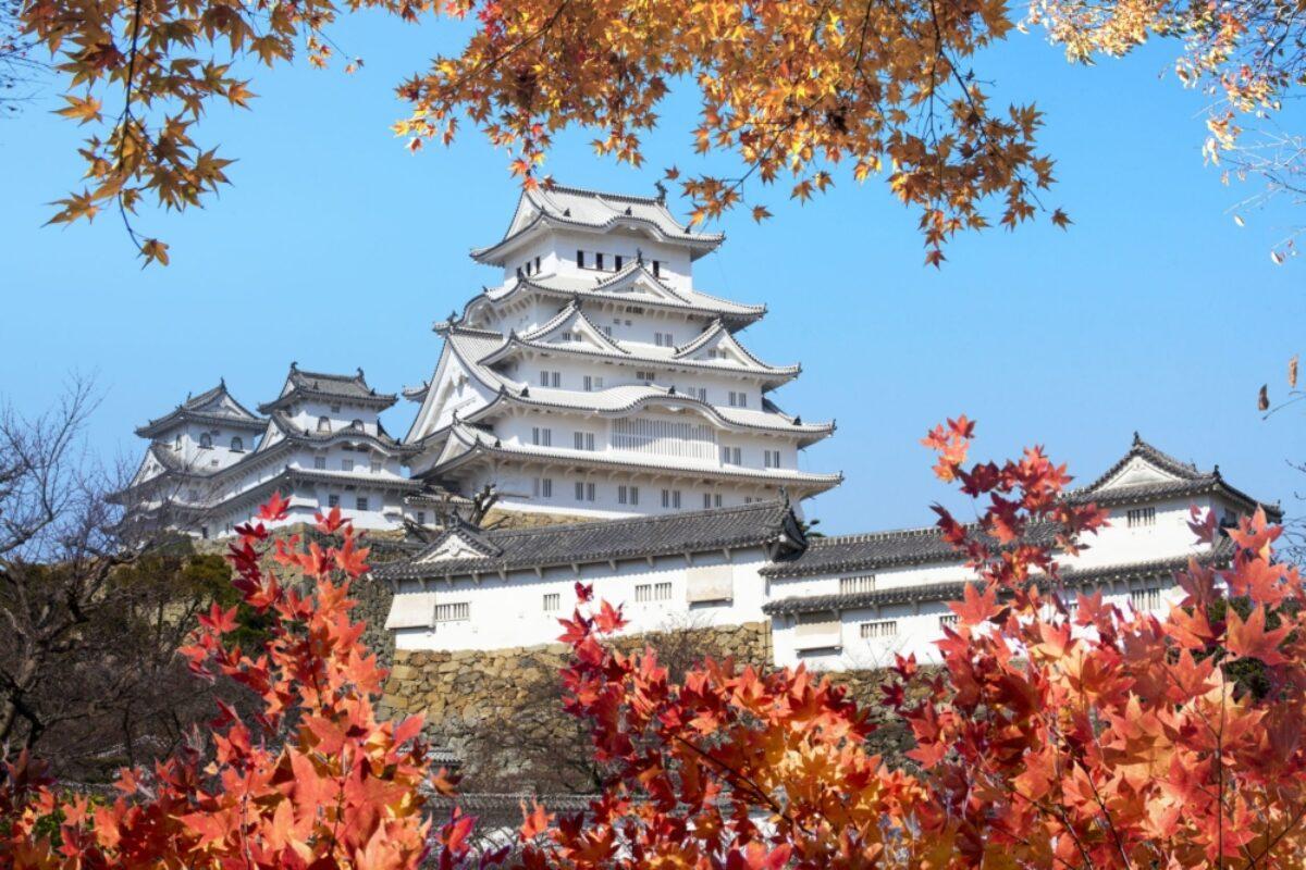 Japan Himeji castle autumn