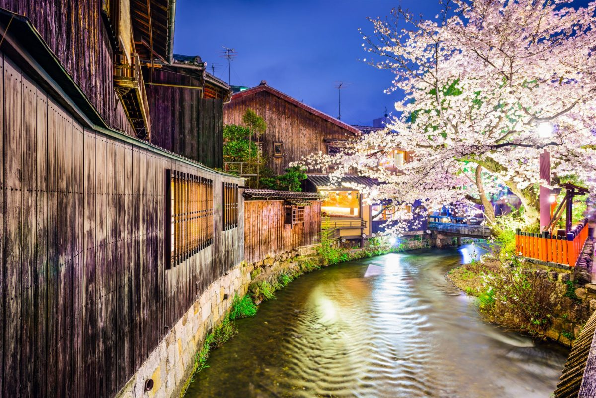 Japan Kyoto Gion District during the spring cherry blosson season