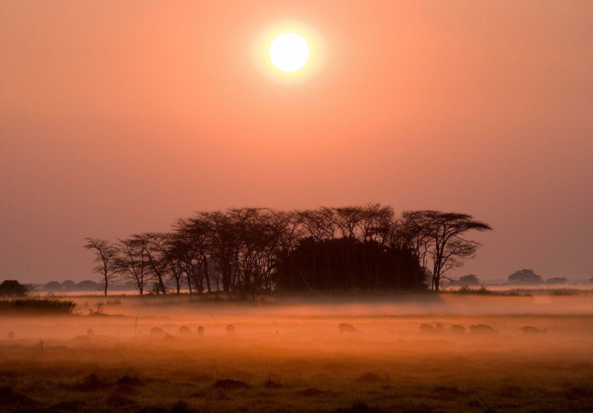 Kafue National Park sunset scene