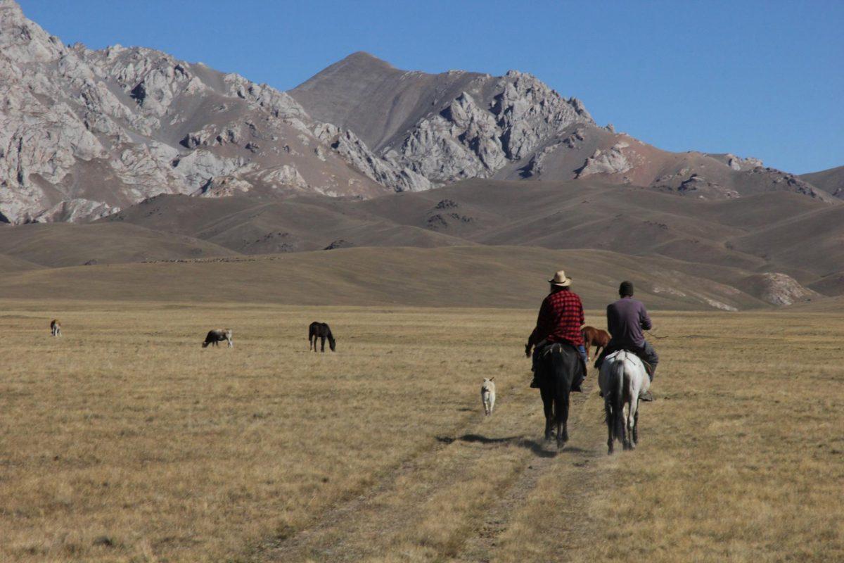 Kalpak Central Asia 1