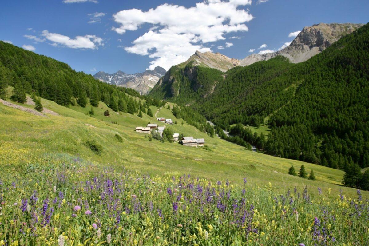 Les Chalmettes Queyras Regional Natural Park Alps France