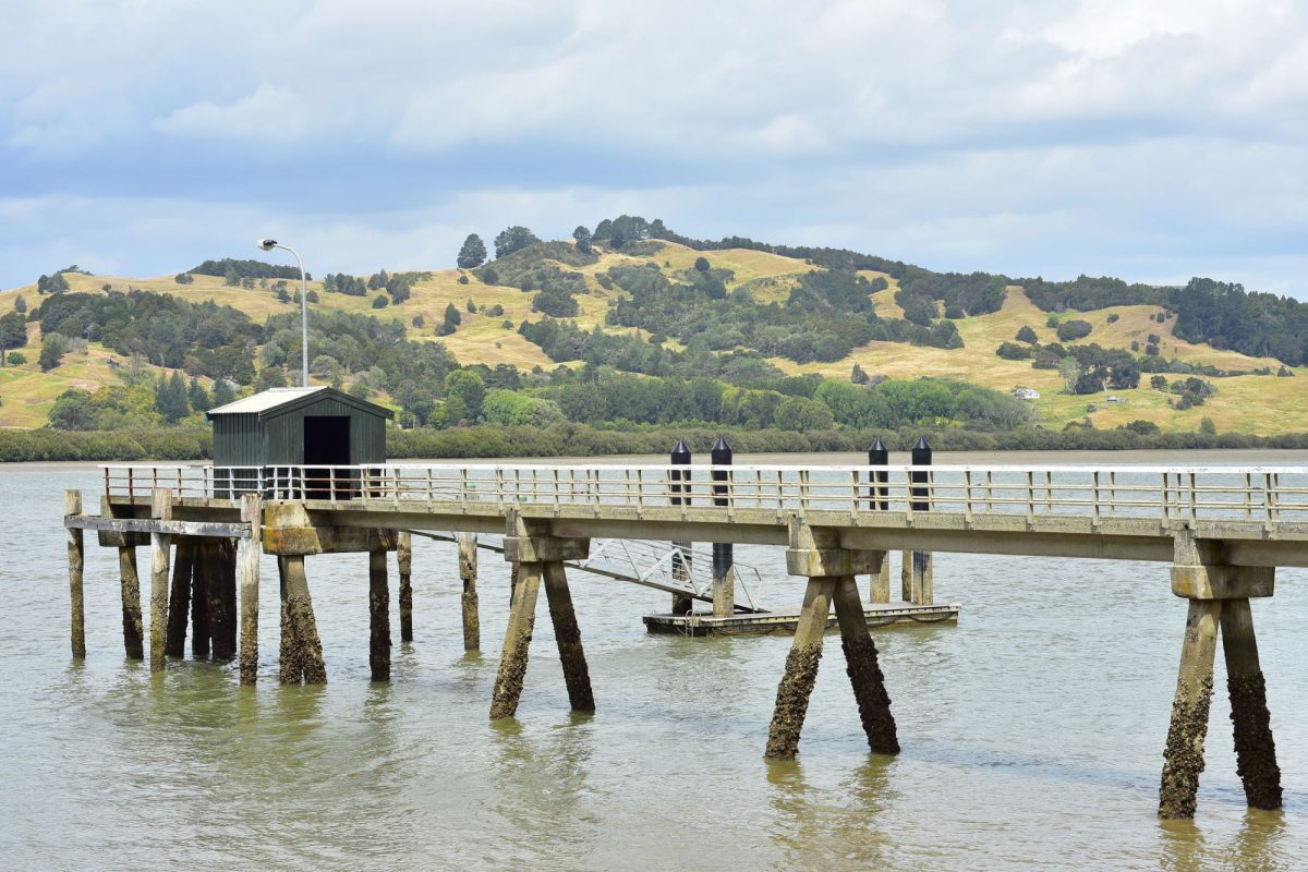 NZ Hokianga Harbour