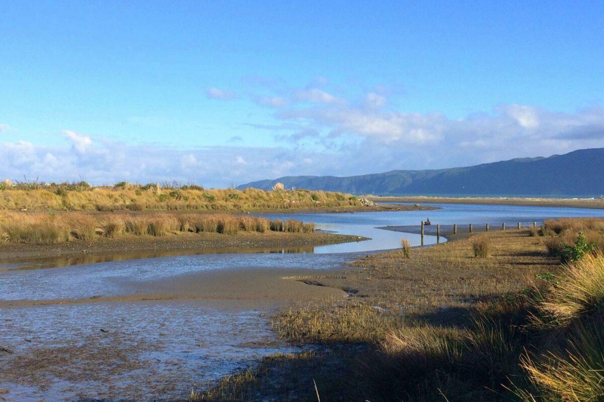 NZ Kapiti Coast