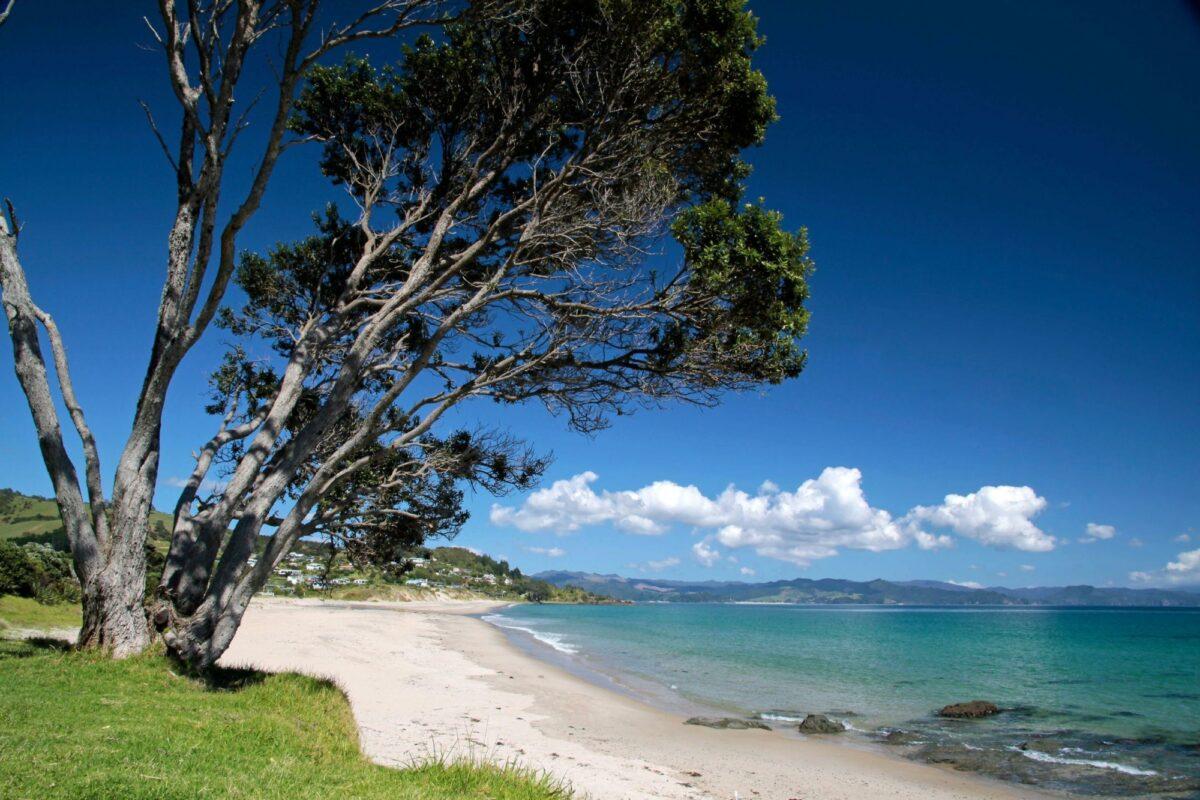 NZ Coromandel Kuaotunu Bay