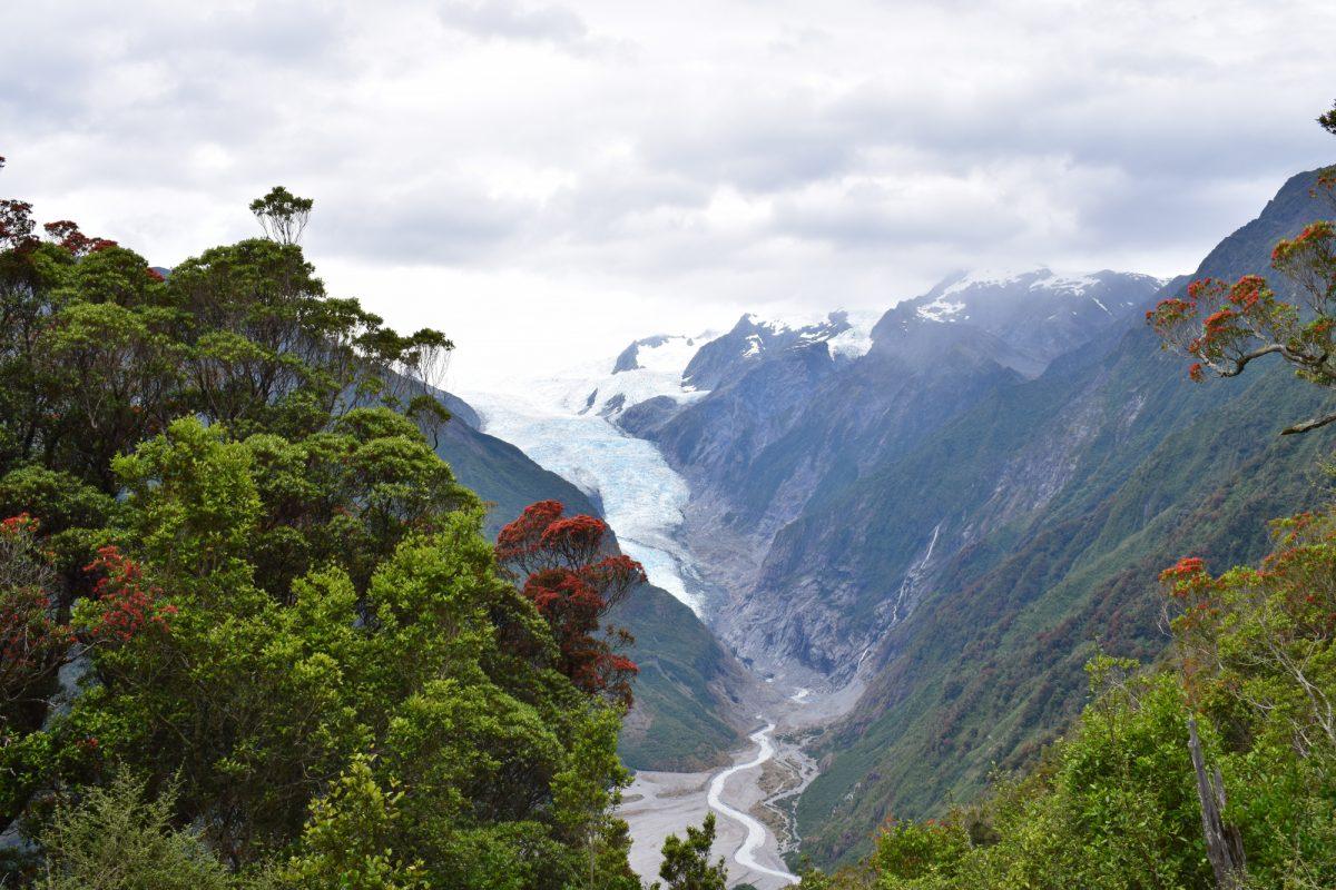 NZ Fox Glacier Alex Knobviewpoint SBJ