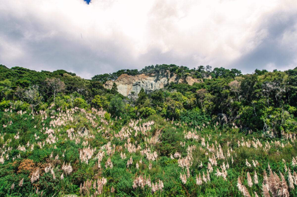 NZ Putangirua Pinnacles