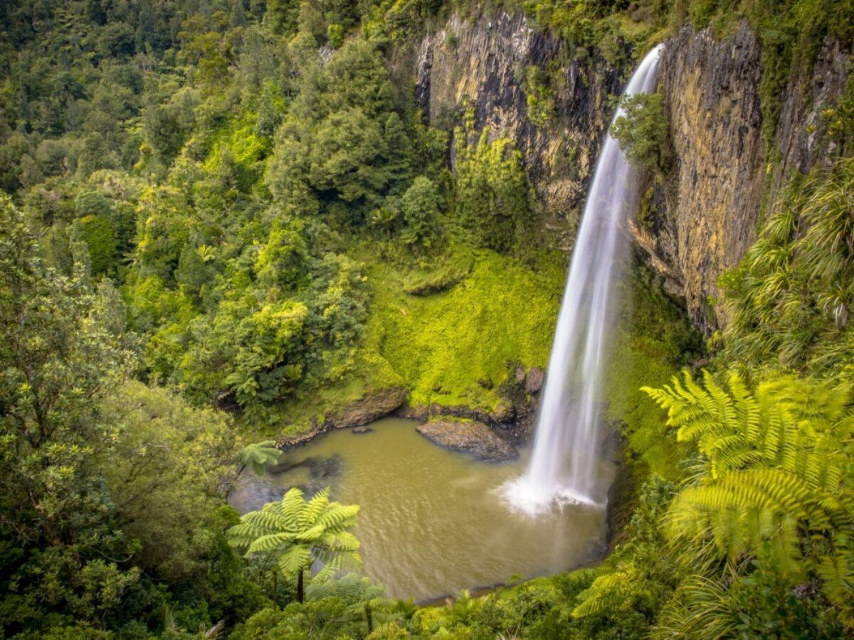 NZ Raglan nearbye jungle waterfall
