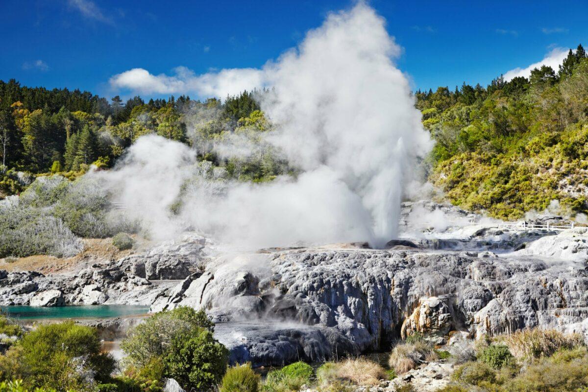 NZ Rotorua Pohutu Geyser Whakarewarewa Thermal Valley
