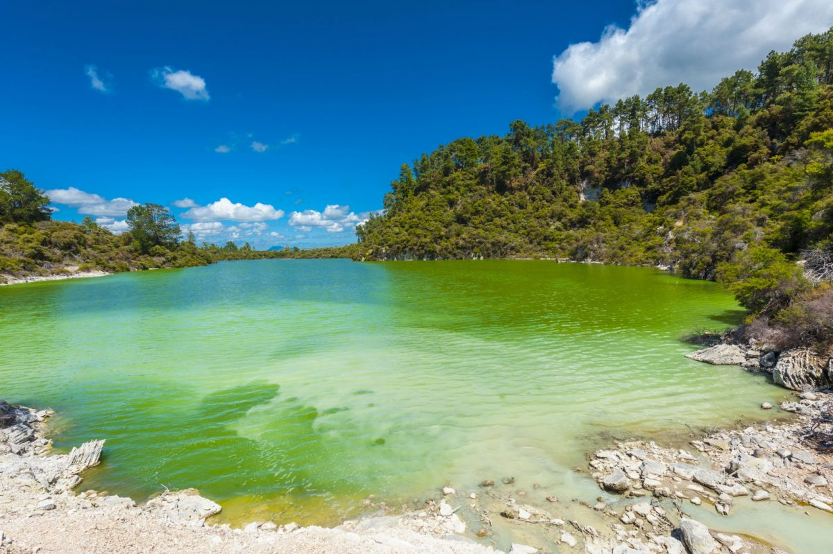 NZ Rotorua Waitapu Green Ngakoro Lake