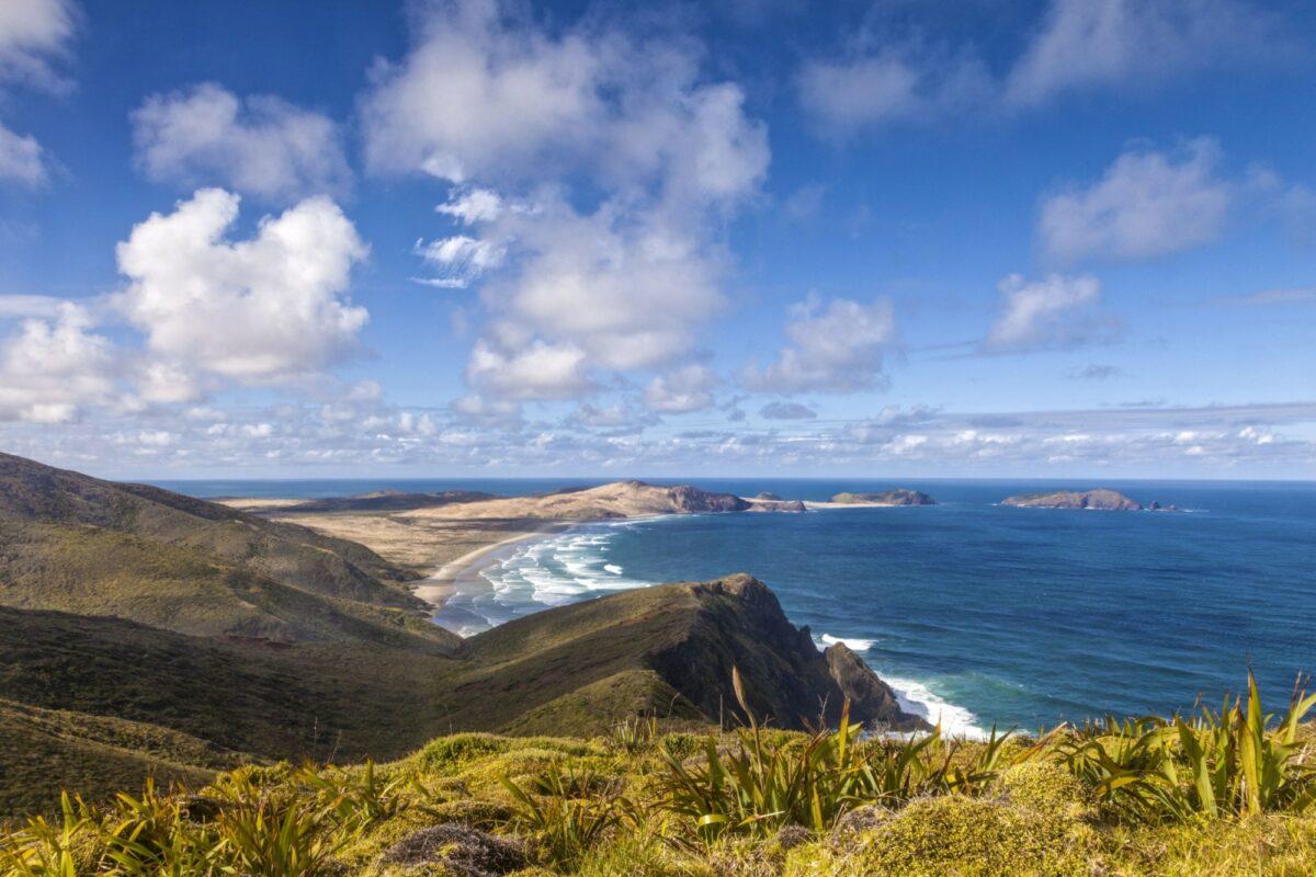 NZ cape Reinga2