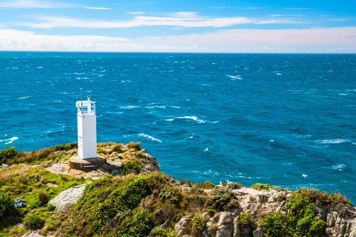NZ lighthouse at Seperation point Abel Tasman National Park