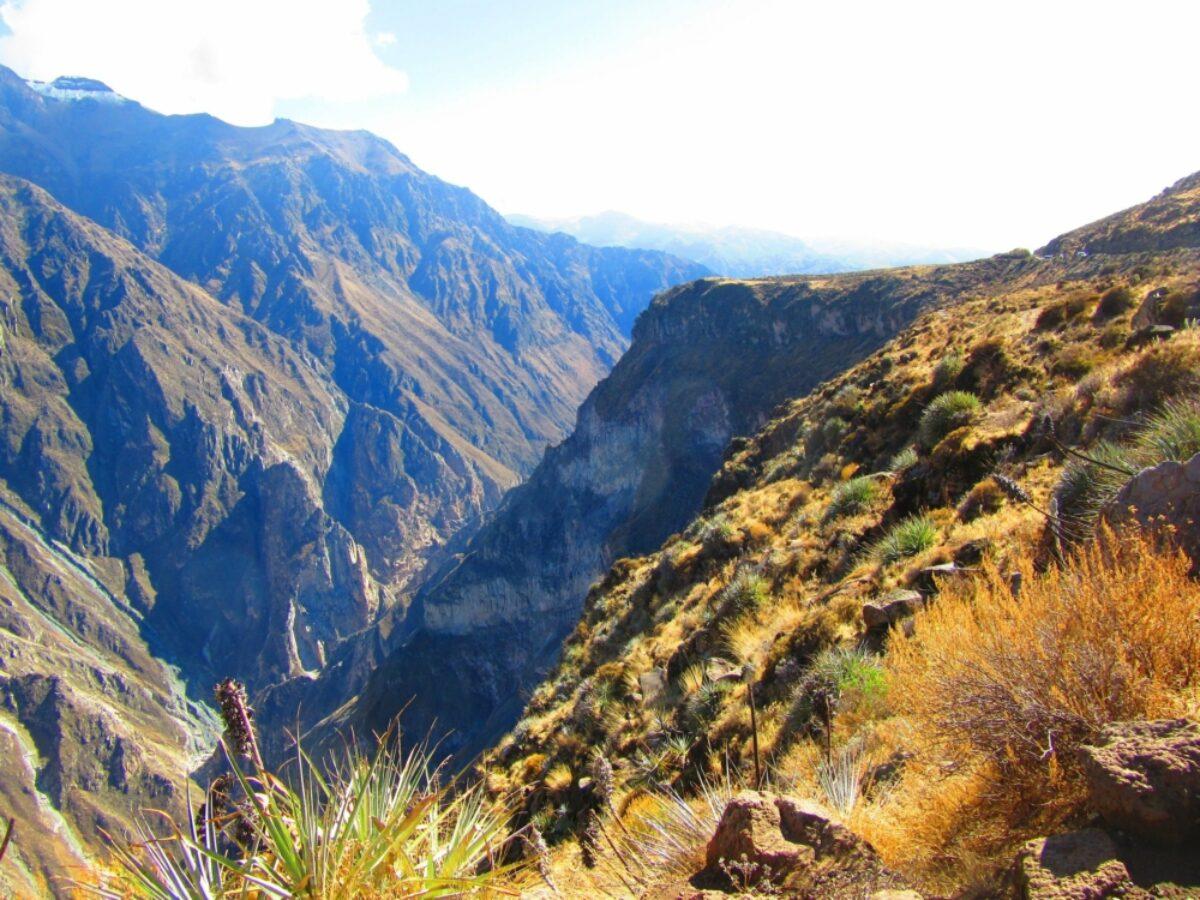 Peru Colca Canyon 2