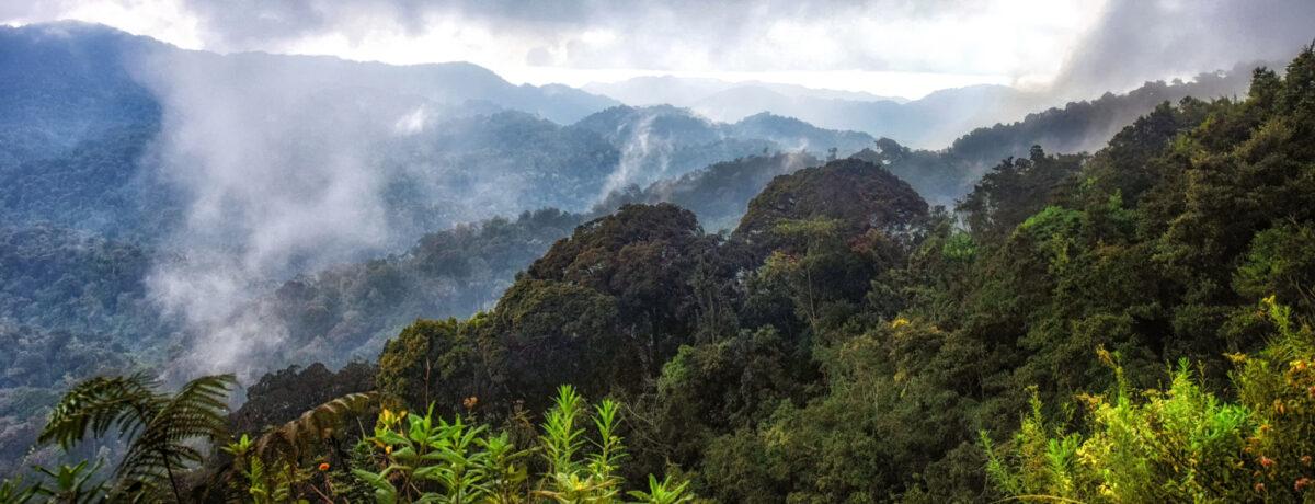 Rwanda Volcanoes