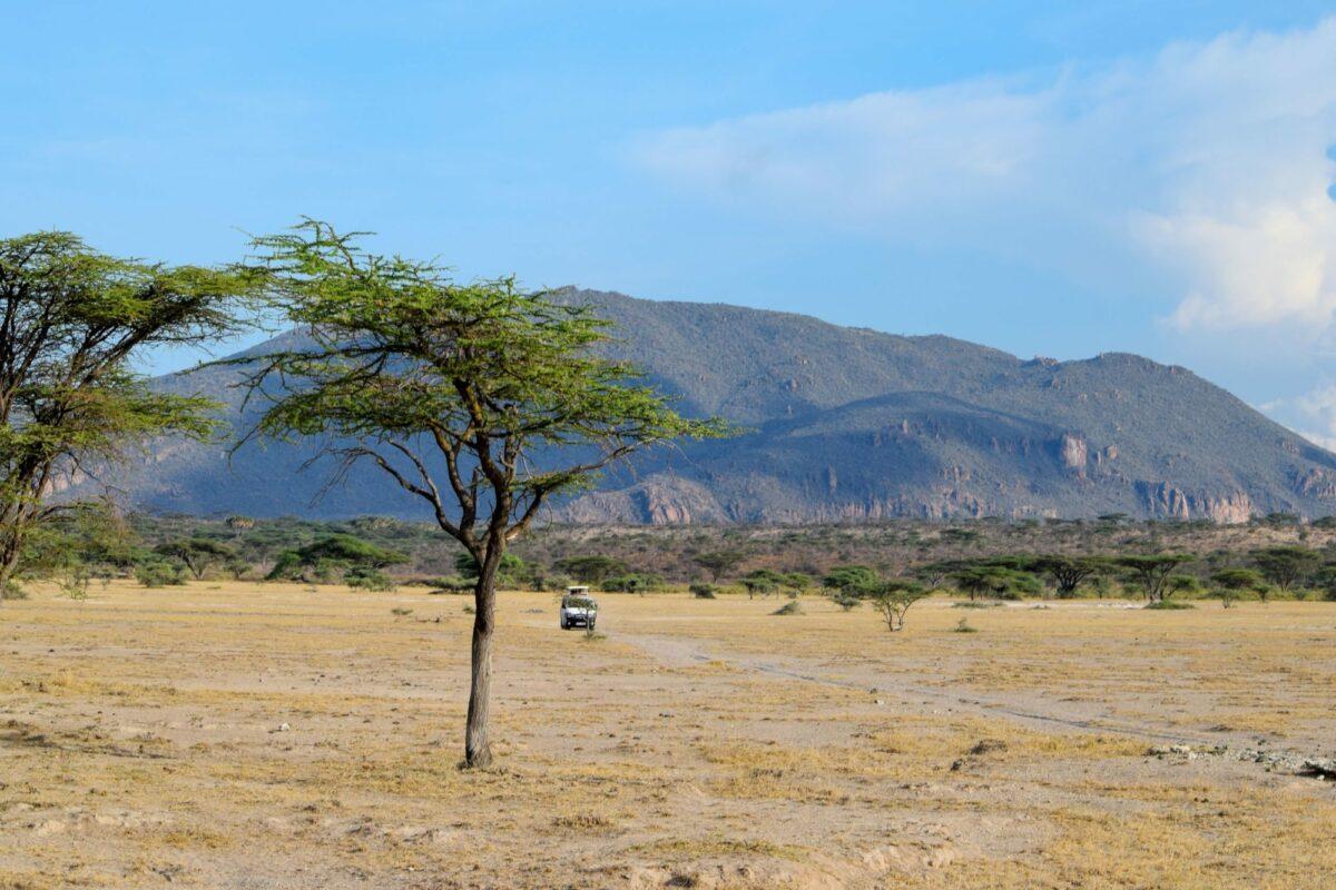 Shaba Game Reserve Kenya