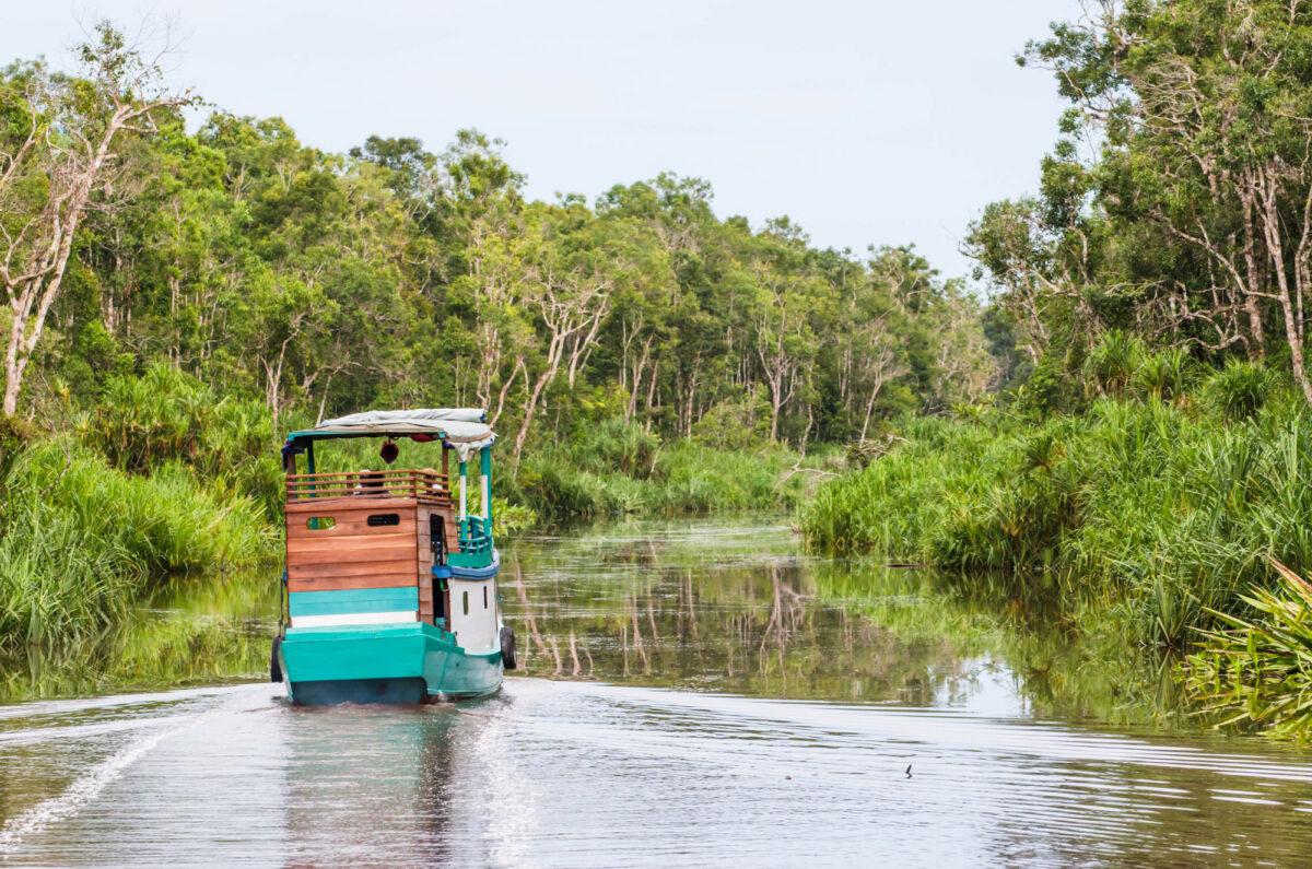 Traditional Klotok sailing on a river in Tanjung Puting National Park Kalimantan Indonesia