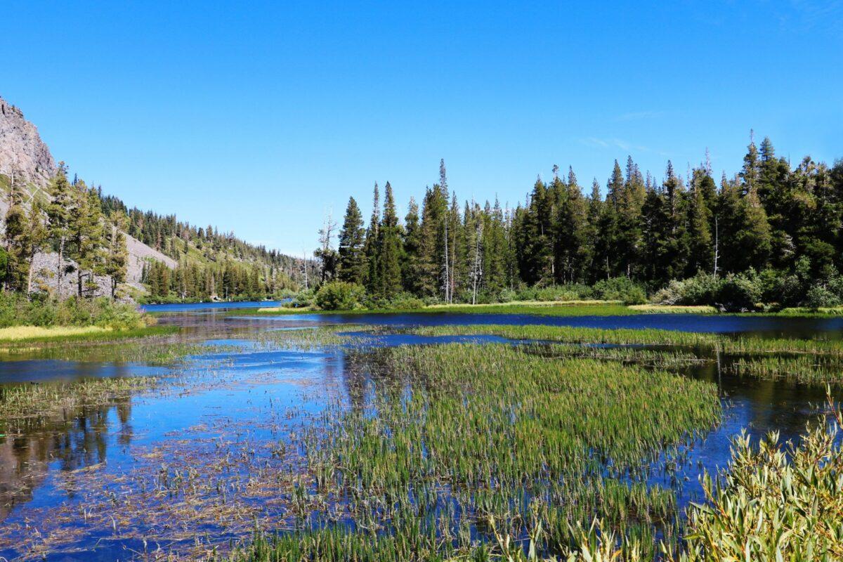 USA mammoth lake