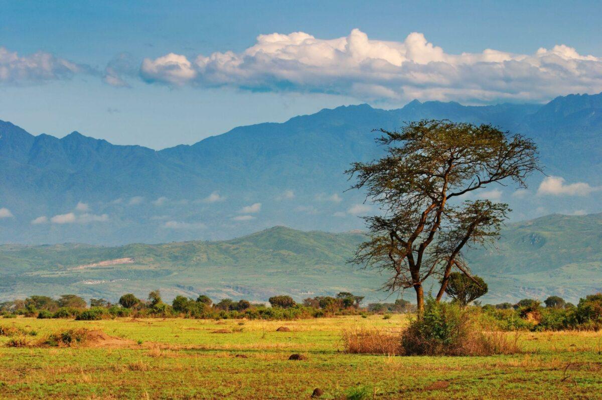Uganda Rwenzori Mountains