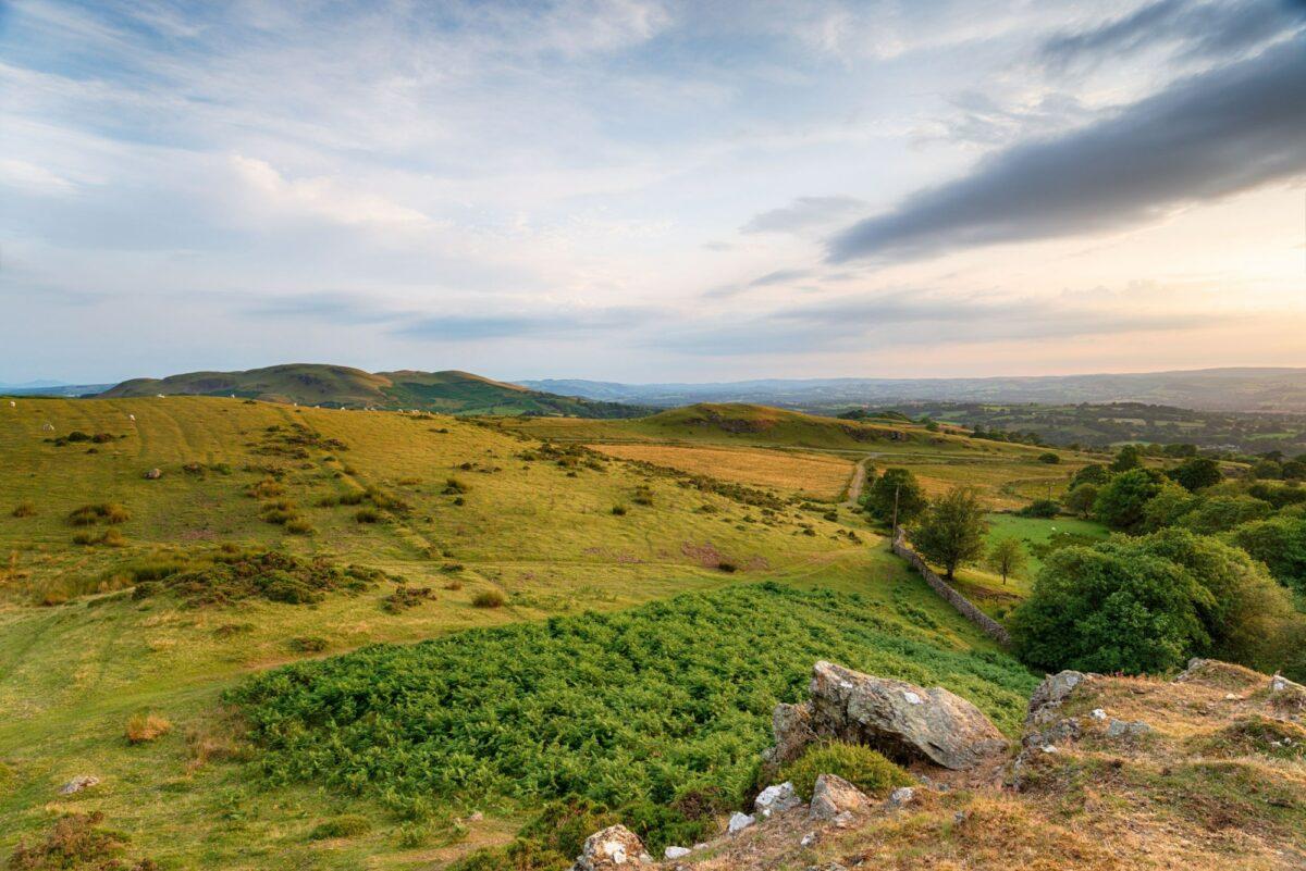 Budget Gilwern Hill near Llandrindod Wells in Powys Wales UK