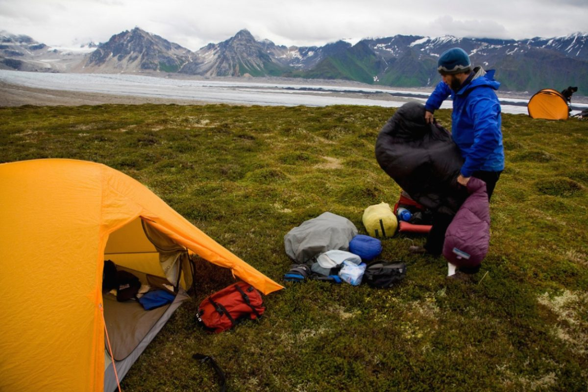 Camping denali alaska usa aaa