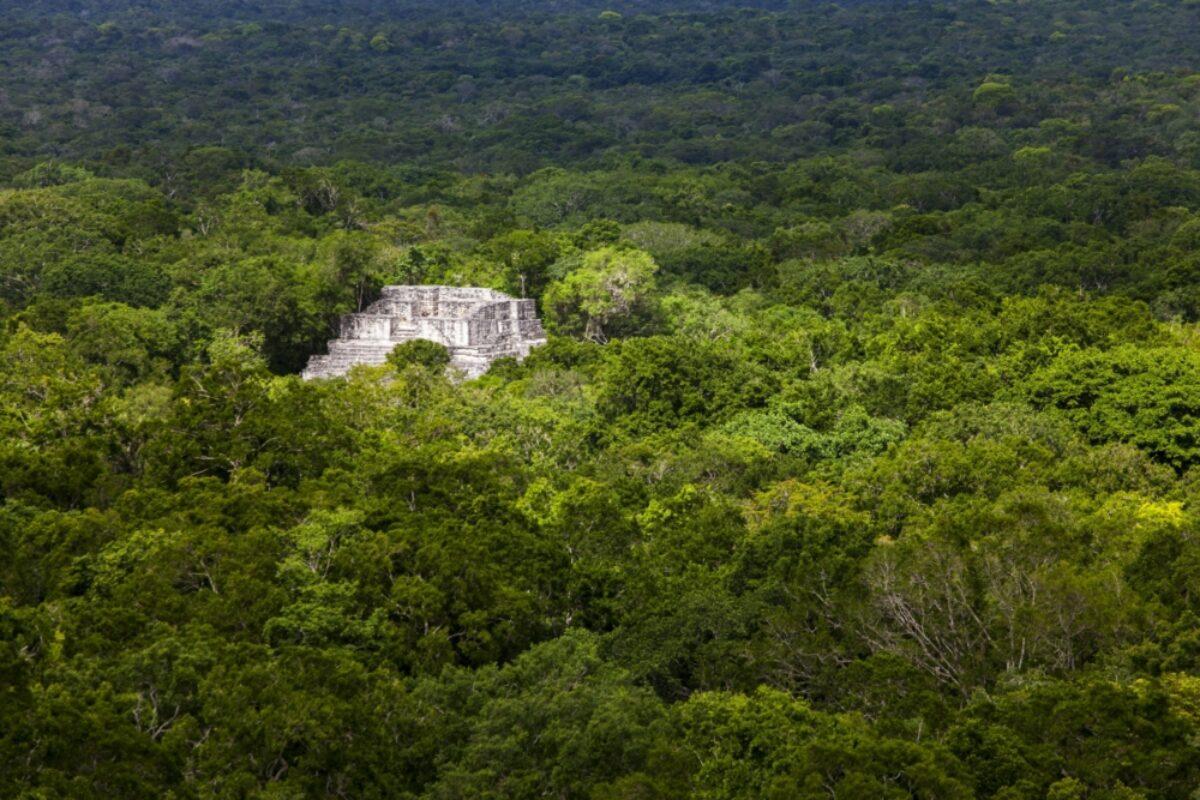 Maya ruins in calakmul mexico