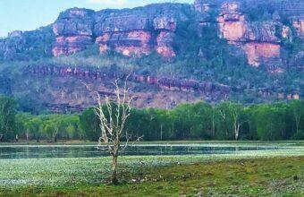 Colours of Kakadu