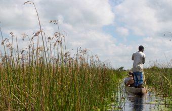 Kayaking the Okavango Delta Adventure