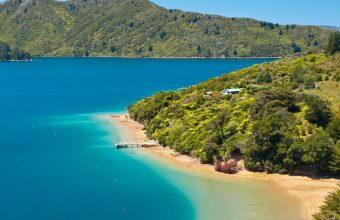 New Zealand Wanderer