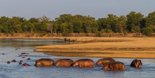 Luambe National Park