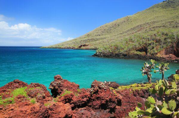Isla Rabida