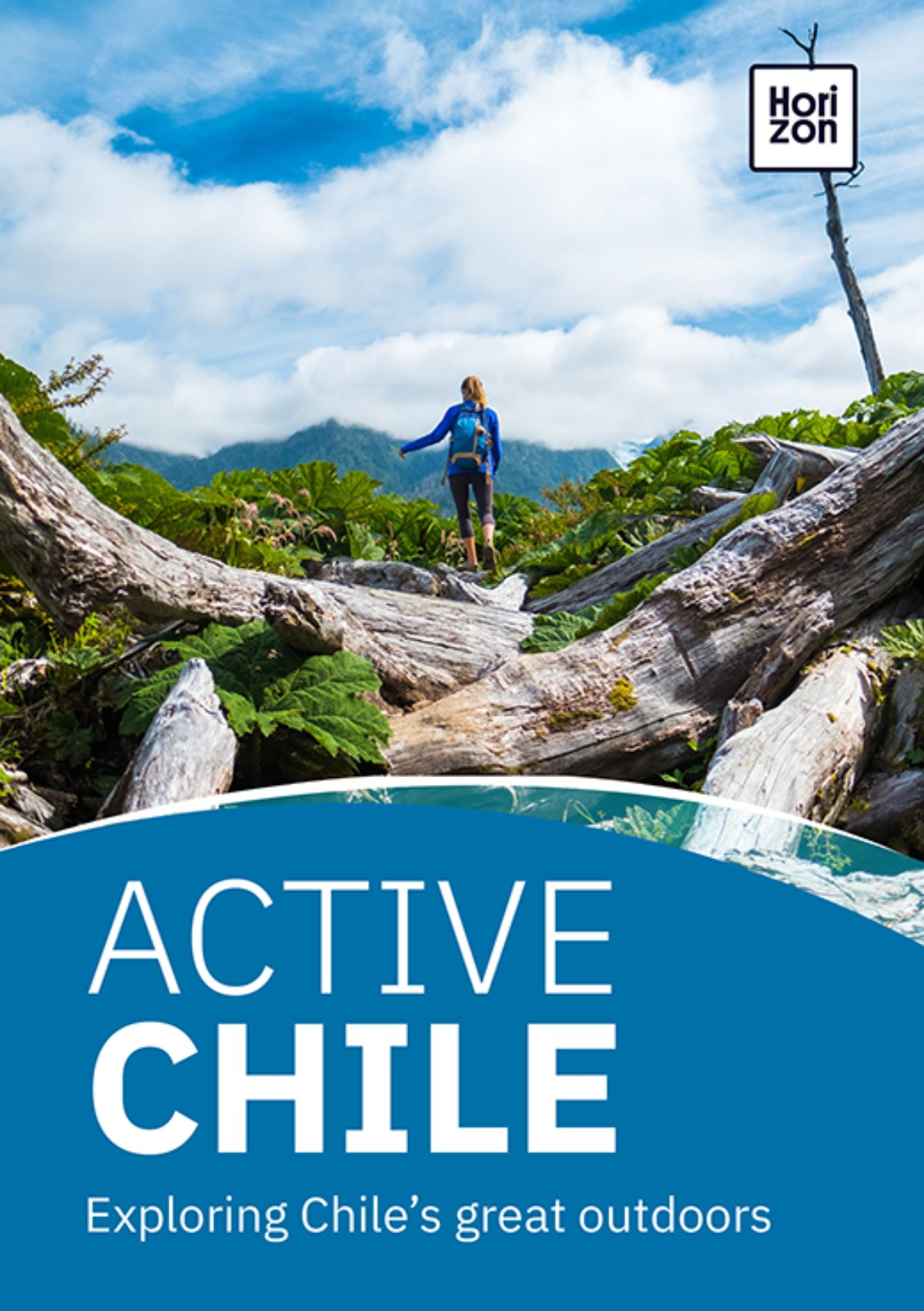Active Chile