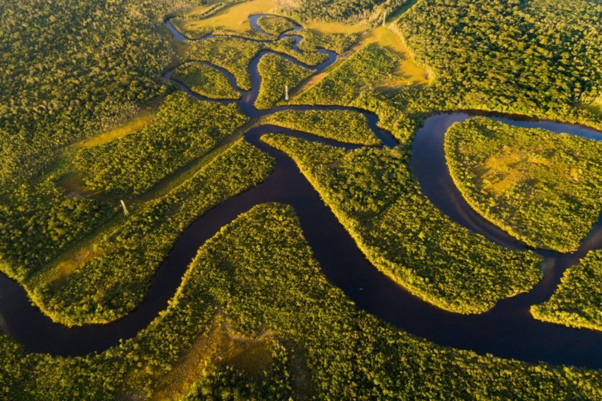 Brazil Amazon2